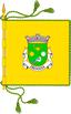 bandeira_freixiosa