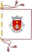 bandeira_vrzea_de_tavares