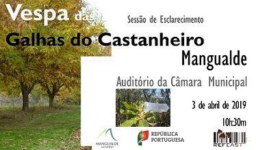 Poster_vespagalhascastanheiro_374220_2